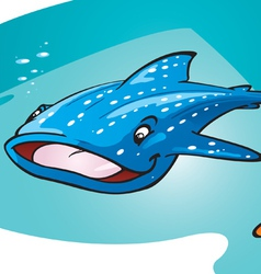 whale shark vector image vector image
