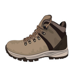 brown winter boots for men on a white background vector image