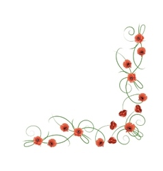 Corner composition from red poppies flowers vector image