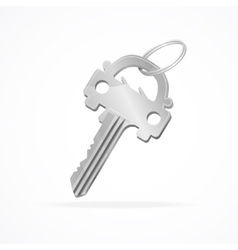 Car key ring vector image