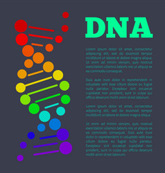 dna deoxyribonucleic acid chain nucleotides poster vector image