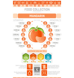 Food infographics poster mandarin fruit vector