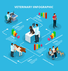 isometric veterinary infographic concept vector image