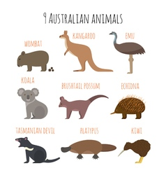 set of Australian animals icons vector image
