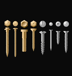set of screws bolts nuts and vector image