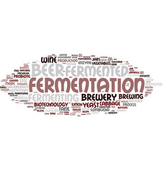 fermenting word cloud concept vector image vector image