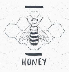 vintage label hand drawn bee grunge textured vector image