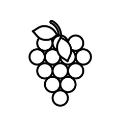 bunch grapes fresh fruit harvest design icon thick vector image