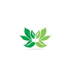 lotus flower green leaf eco logo vector image