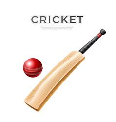realistic cricket bat stick betting promo vector image