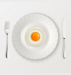 realistic fried egg icon on a plate with vector image
