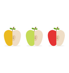 sliced apples vector image
