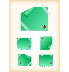 Stickers with ladybirds and scotch vector image