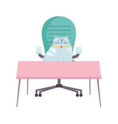 workspace cat on chair and desk isolated design vector image