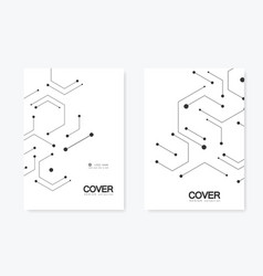 connection and social network hexagons technology vector image