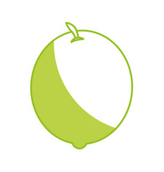 Lemon fresh fruit icon vector