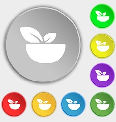 Organic food icon sign Symbol on eight flat vector image