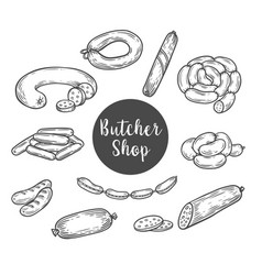 sketch for butcher shop with wurst and sausage vector image
