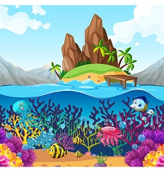 Scene with fish under the ocean vector image vector image