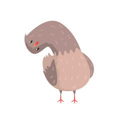 surprised dove with head tilting to one side vector image