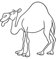 cartoon camel vector image