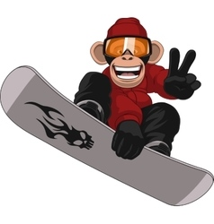 Funny Monkey Snowboarder vector image