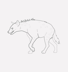 hyena icon line element of vector image