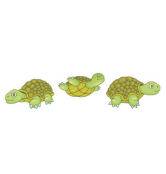 set turtles vector image