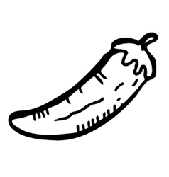 chilli doodle vector image vector image