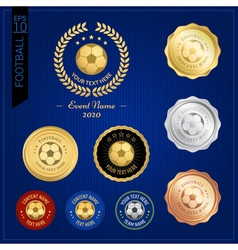 Badge Sports badge Football vector image vector image