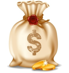 Moneybag vector image vector image