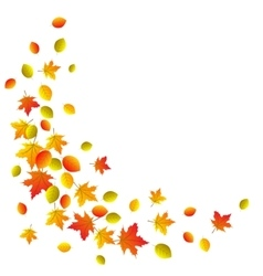 Autumn decorative border vector image