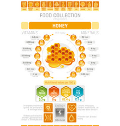 Food infographics poster honey dessert vector