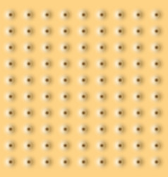 Realistic cookie texture background eps10 vector