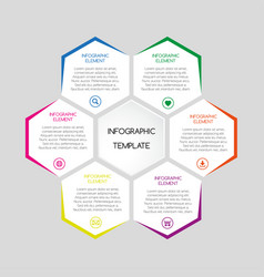 infographic template with hexagons vector image