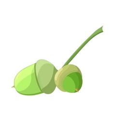 Acorn in cartoon style vector