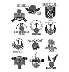 basketball club or championship award icons vector image