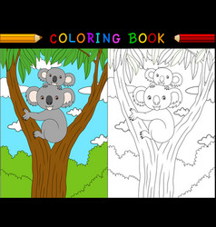 cartoon koala coloring book australian animals se vector image