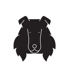 collie black concept icon collie fl vector image