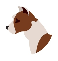 Dog head american pitt bull terrier vector image
