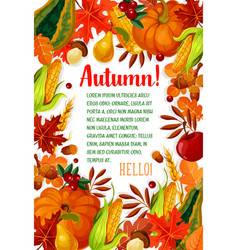 hello autumn poster with fall season leaf frame vector image