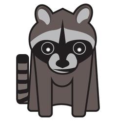 Raucus raccoon vector
