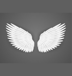 realistic detailed 3d white blank wings template vector image