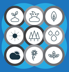 set of 9 nature icons includes bush tree leaf vector image