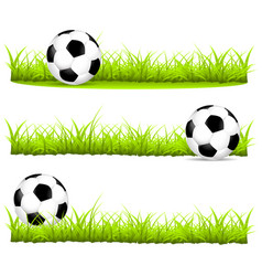 soccer ball on the grass in different variants vector image