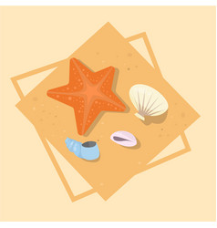 Star fish and shells icon summer sea vacation vector