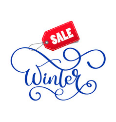 winter sale hand written inscription on christmas vector image