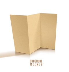 Blank tri-fold brochure design isolated paper vector