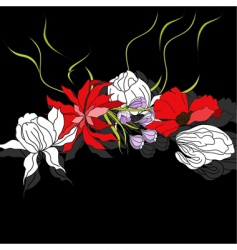 colorful flowers on black background vector image