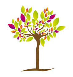 Colorful tree plant with several leaves vector